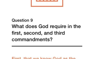 Question 9 (New City Catechism)